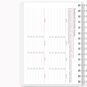 Planner de estudos permanente